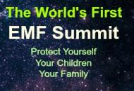 EMF summit graphic