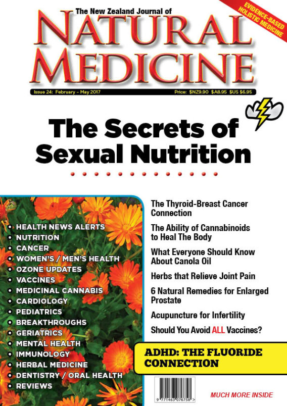 The NZ Journal of Natural Medicine Issue 24 cover for website