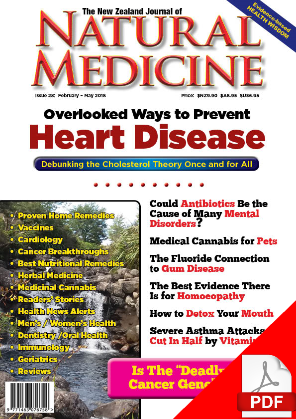 The new zealand journal of natural medicine issue 28 ebook the new zealand journal of natural medicine issue 28 ebook fandeluxe Gallery